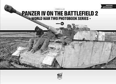 >PANZER IV ON THE BATTLEFIELD 2<