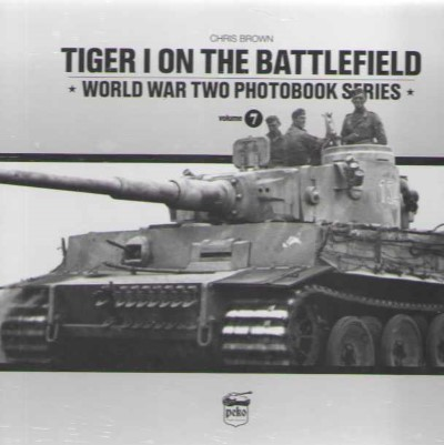 >TIGER I ON THE BATTLEFIELD<